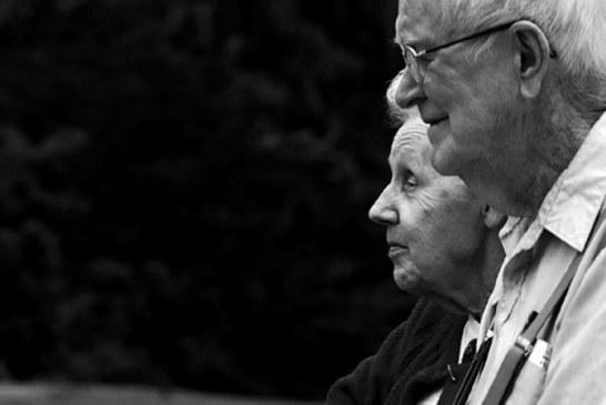 Pislaru: Pensiile vor creste cu 5,2-5,3% anul viitor