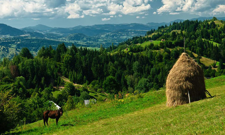 maramures-the-huffington-post