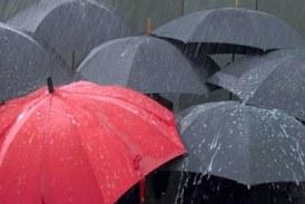 Judetele Maramures, Bistrita-Nasaud, Mures si Satu-Mare, sub atentionare de precipitatii abundente si vant puternic