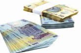 Leul se apreciaza, dar euro ramane la 4,59