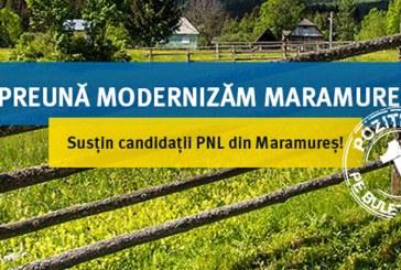 Voteaza o administratie liberala!Proiectele echipei PNL pentru Consiliul Judetean Maramures