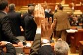 Se amana votul final pentru OUG 13 in plenul reunit