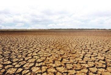 ONU: Orientul Mijlociu si Africa de Nord, vizate de o noua avertizare de seceta severa