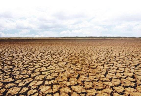 Numeroase suprafete agricole din tara vor prezenta deficite de umiditate, in urmatoarea saptamana