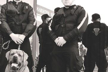 Furt din magazine: Doi hoti prinsi in flagrant de agentii firmei Sica Guard
