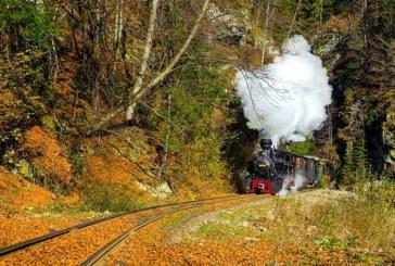 Mocanita: Se fac verificari la calea ferata feroviara din Viseu de Sus. Comisia mixta a fost formata de Prefectura Maramures