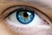 Un tratament promitator pentru degenerescenta maculara a demonstrat o reducere cu 20% a progresiei leziunilor