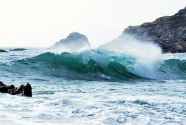 """Doar 13% din suprafata oceanelor lumii este """"netulburata"""" de interventia omului"""