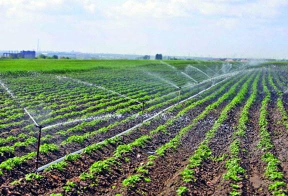 Imbunatatirea gestionarii apei in sectorul agricol, analizata de specialistii Ministerului Agriculturii