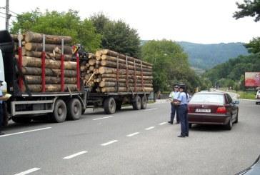 Autoutilitara cu care se transporta ilegal material lemnos, indisponibilizata de politisti