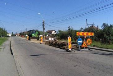38 de proiecte in valoare de 30 de milioane de euro aprobate pe PNDR in Maramures