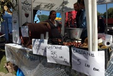 """Comerciantii care vor dori sa participe la """"Festivalul Castanelor"""" vor trebui sa liciteze pentru spatii. Vezi aici preturile de pornire"""