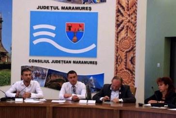 Gabriel Zetea, Horia Scubli, Gabriela Tulbure si Ioan Maties in Comitetul Director al ADR NV