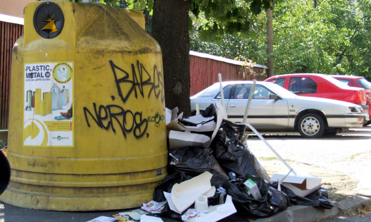 baia mare gunoi (2)