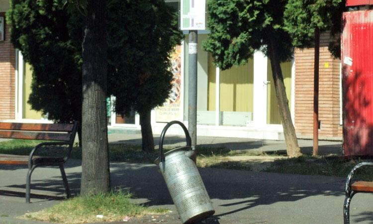 baia mare gunoi (3)