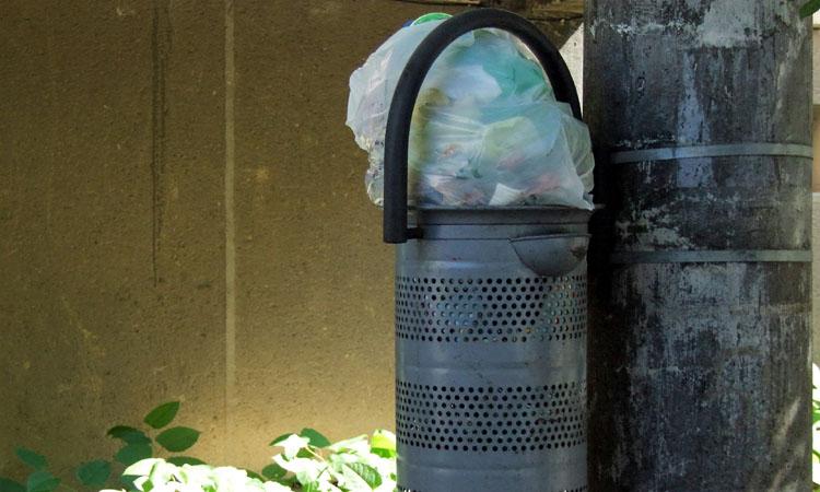 baia mare gunoi (4)
