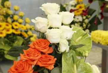 Sarbatoarea Castanelor: Expo-Flora, la o noua editie. Vezi imagini (FOTO)