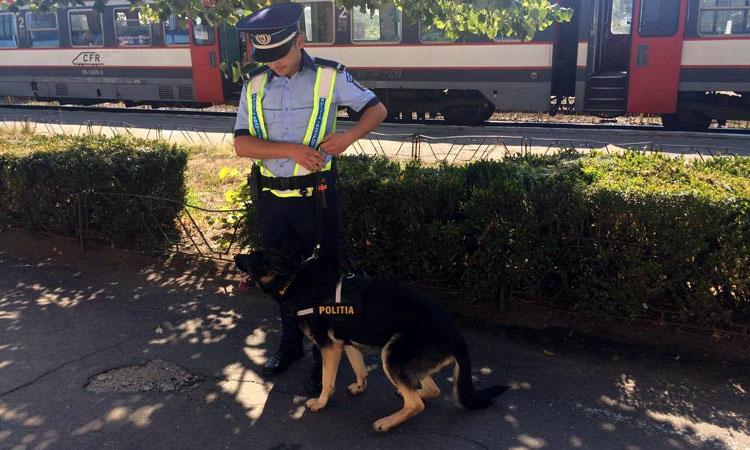 politist tren