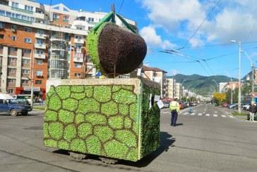 Festivalul Castanelor 2016: Vezi programul complet