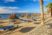ADVERTORIAL: Tenerife – Insula Primaverii Vesnice