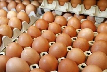 UCPR: Pretul oualor a crescut la poarta fermei cu 24% in luna octombrie