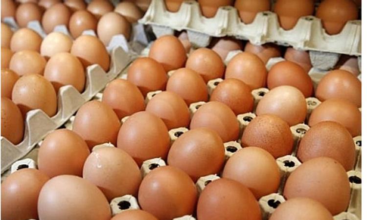 Consiliul Concurentei investigheaza un cartel pe piata oualor, care ar fi determinat cresterea semnificativa a preturilor
