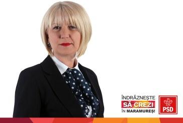 """Liliana Moga: """"Relatia dintre stat si mediul de afaceri privita ca un parteneriat serios in programul de guvernare al PSD"""""""