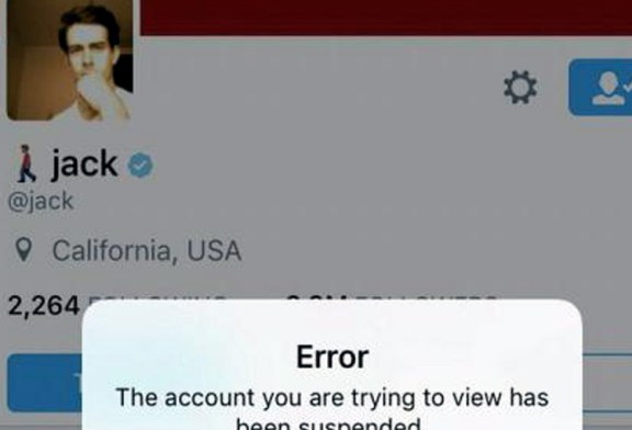 Twitter a suspendat din greseala contul patronului sau