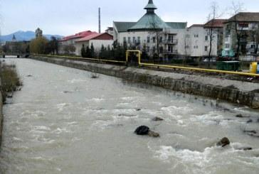 De la cititori: Muncitor surprins in timp ce arunca gunoaie in raul Sasar (VIDEO)