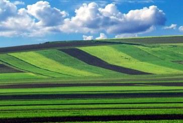 Irimescu: Persoanele fizice vor putea achizitiona terenuri in limita a 150 de hectare,iar cele juridice pana la 1.500 ha