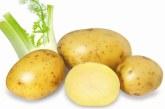 Fibrele fermentabile din alimentatie pot stopa dezvoltarea diabetului de tip 1