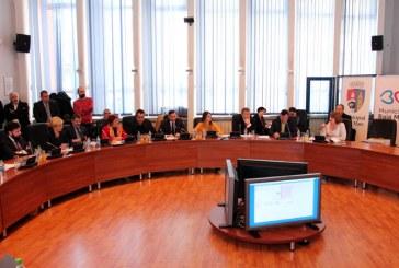 Consiliul Local isi cauta avocat pentru procesele cu Cristian Niculescu Tagarlas