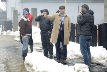 Vital si Drusal, mobilizate pentru curatarea canalizarii si carosabilului din Baia Mare