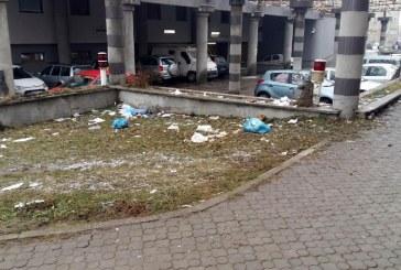 Consilierii locali PSD propun solutiipentru asigurarea curateniei municipiului Baia Mare (FOTO)