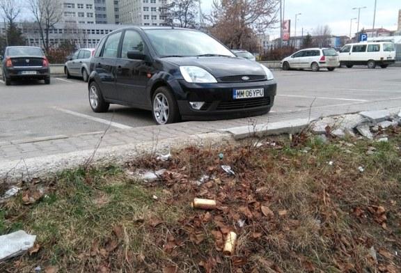 De la cititori: Mizerie si delasare langa supermarketul Kaufland din Baia Mare (FOTO)