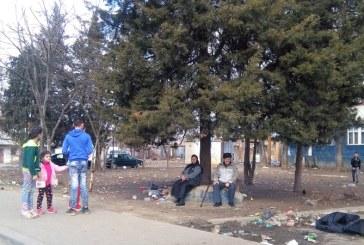 Romii din Baia Mare, din nou in atentia Consiliului National pentru Combaterea Discriminarii