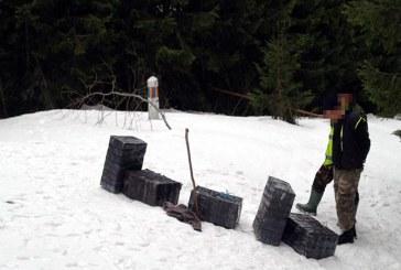 Tigari transportate cu snow-mobilul si ascunse intr-un scaun auto pentru copii, descoperite de politistii de frontiera