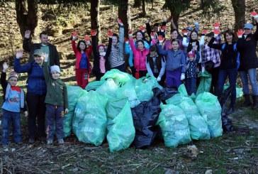 "Proiectul ""Baia Mare curata"" continua si in acest an"