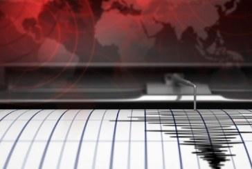 Trei cutremure de suprafata s-au produs joi dimineata in judetul Vaslui
