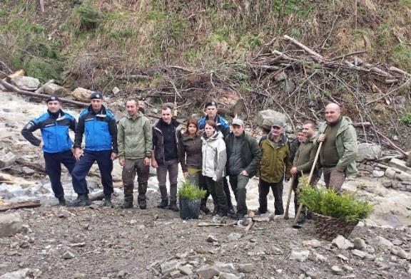 Jandarmii maramureseni contribuie la protejarea naturii