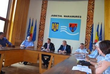Problema porcilor mistreti dezbatuta in Comitetul Judetean pentru Situatii de Urgenta Maramures