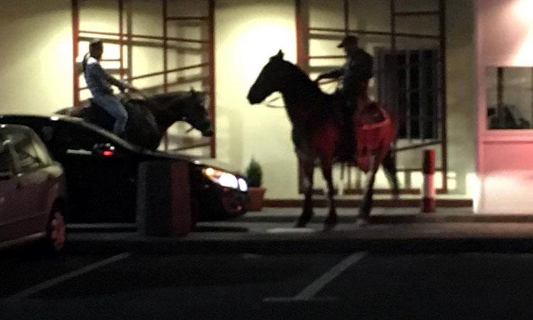 N-ai mai vazut asa ceva! Au mers cu caii la Mc'Donalds Baia Mare (FOTO)