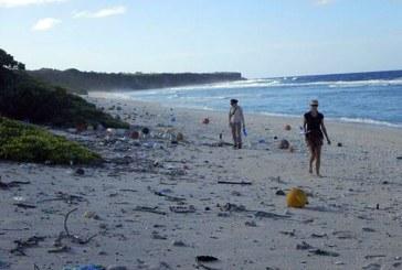 Cea mai mare densitate de deseuri de plastic din lume, descoperita pe o insula nelocuita din Pacific
