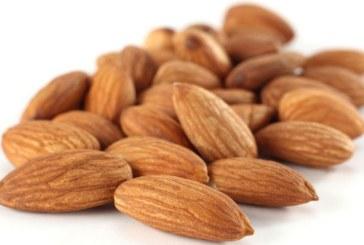Consumul de fructe oleaginoase reduce cu peste 40% riscul de recidiva a cancerului colorectal