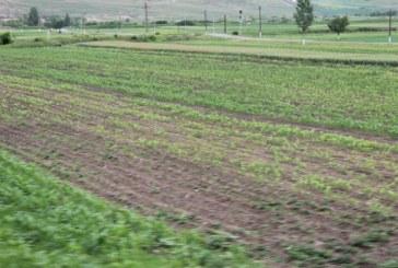 Fermierii vor putea accesa pana la 1,5 milioane de euro din fonduri europene pentru investitii in sistemele de irigatii