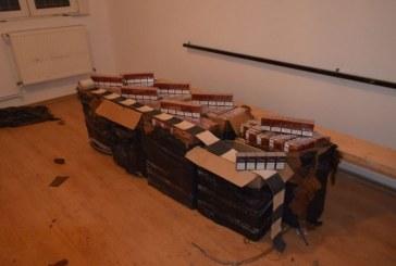 Tigari de contrabanda confiscate la frontiera de nord