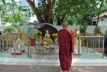 Budistii sarbatoresc ziua de Vesak, sarbatoarea Iluminarii