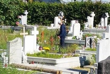 Cavnic: A inceput campania de curatare in cele 11 cimitire. Asistatii sociali sunt cei care sunt angrenati in aceasta actiune