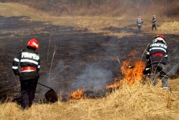 Incendiile de vegetație uscată pun stăpânire pe Maramureș