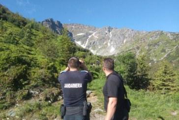"""""""Tabara de vara alpina"""": Drumetii montane cu supravegherea jandarmilor maramureseni"""